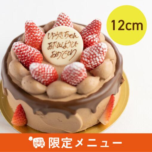 苺のデコレーション(チョコ)12cm