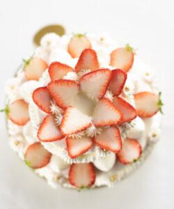 苺のアニバーサリー2